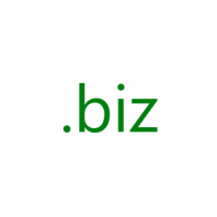 .biz Domain Name